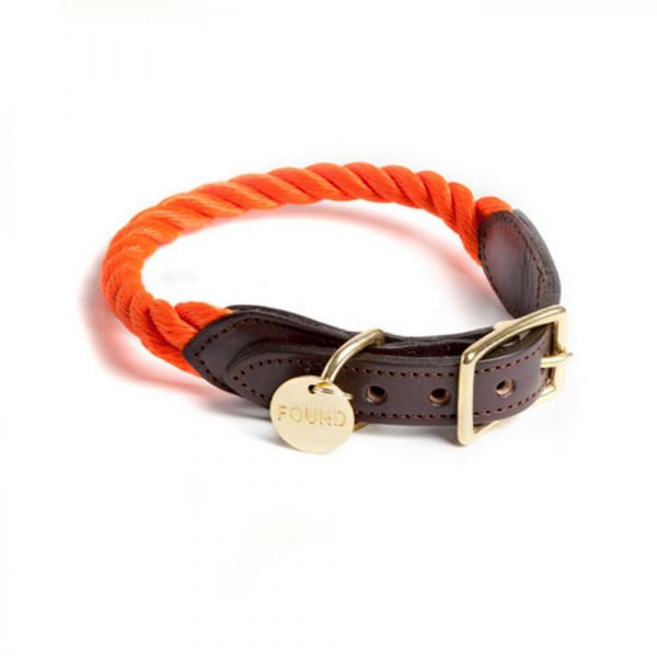 FOUNDMYANIMAL Tauhalsband orange
